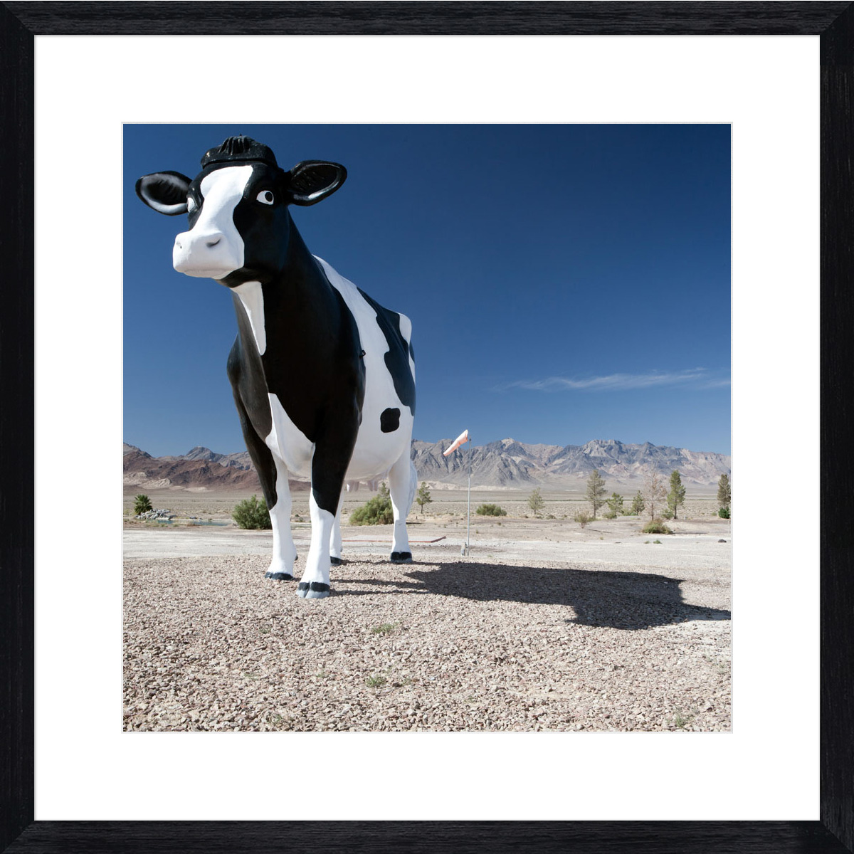 giant-cow_black