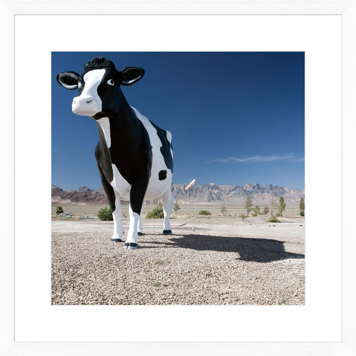giant-cow_white