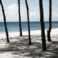 Mbudya Island I