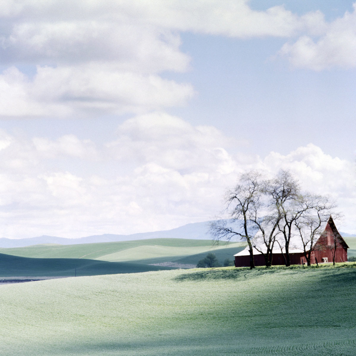 palouse-farm