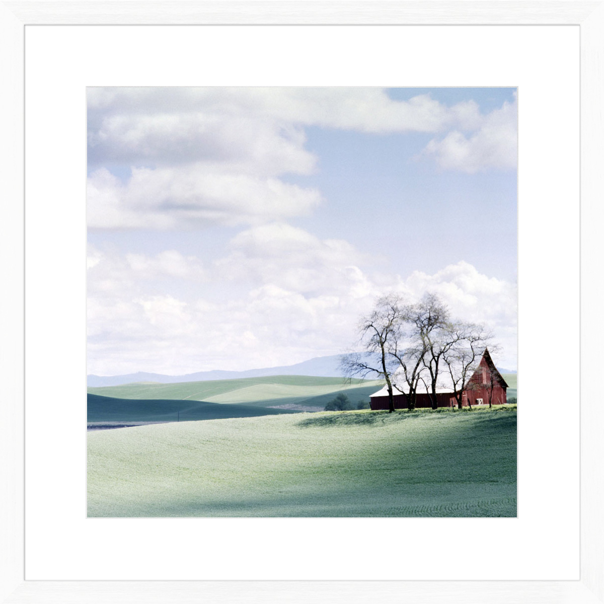 palouse-farm_white