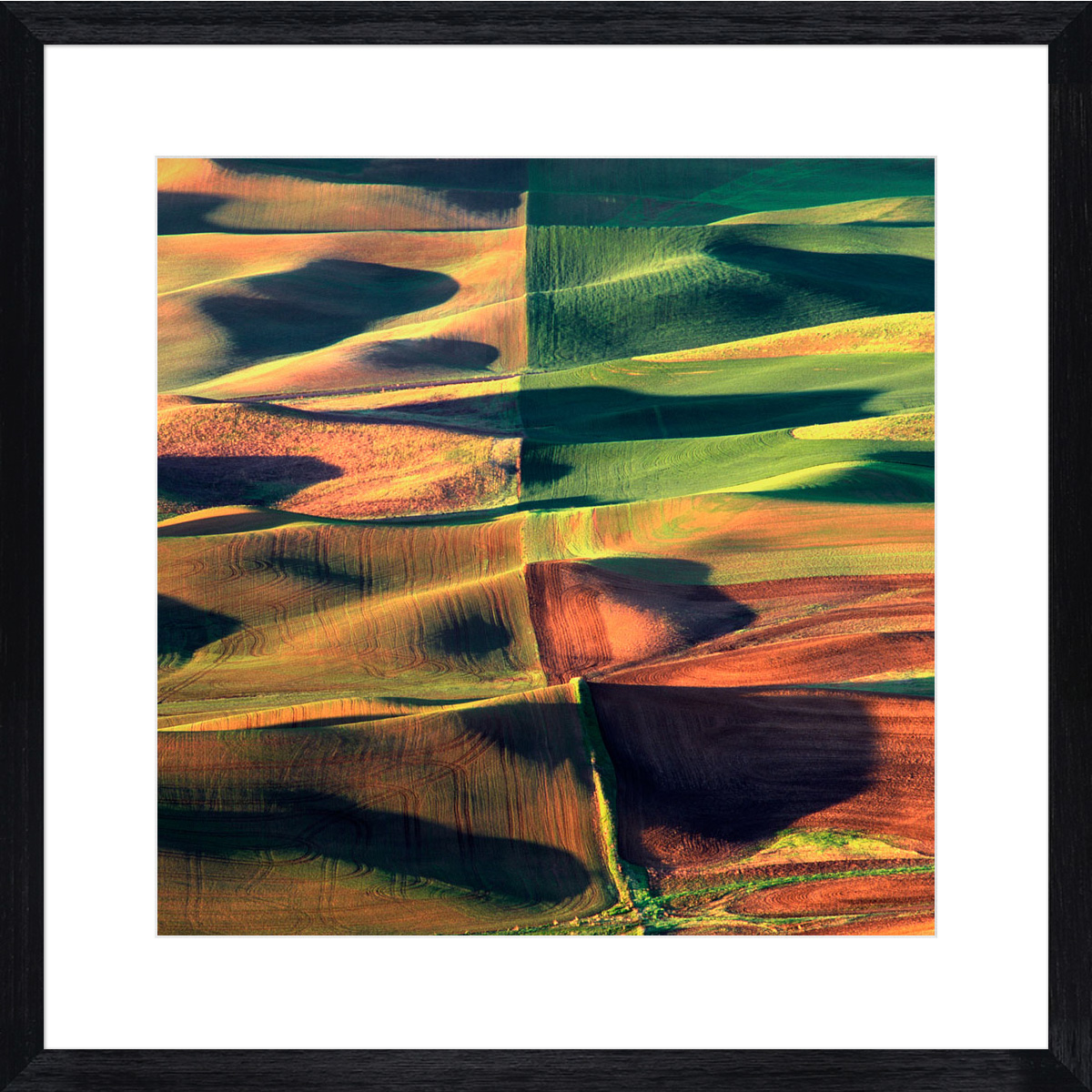 palouse-quads_black