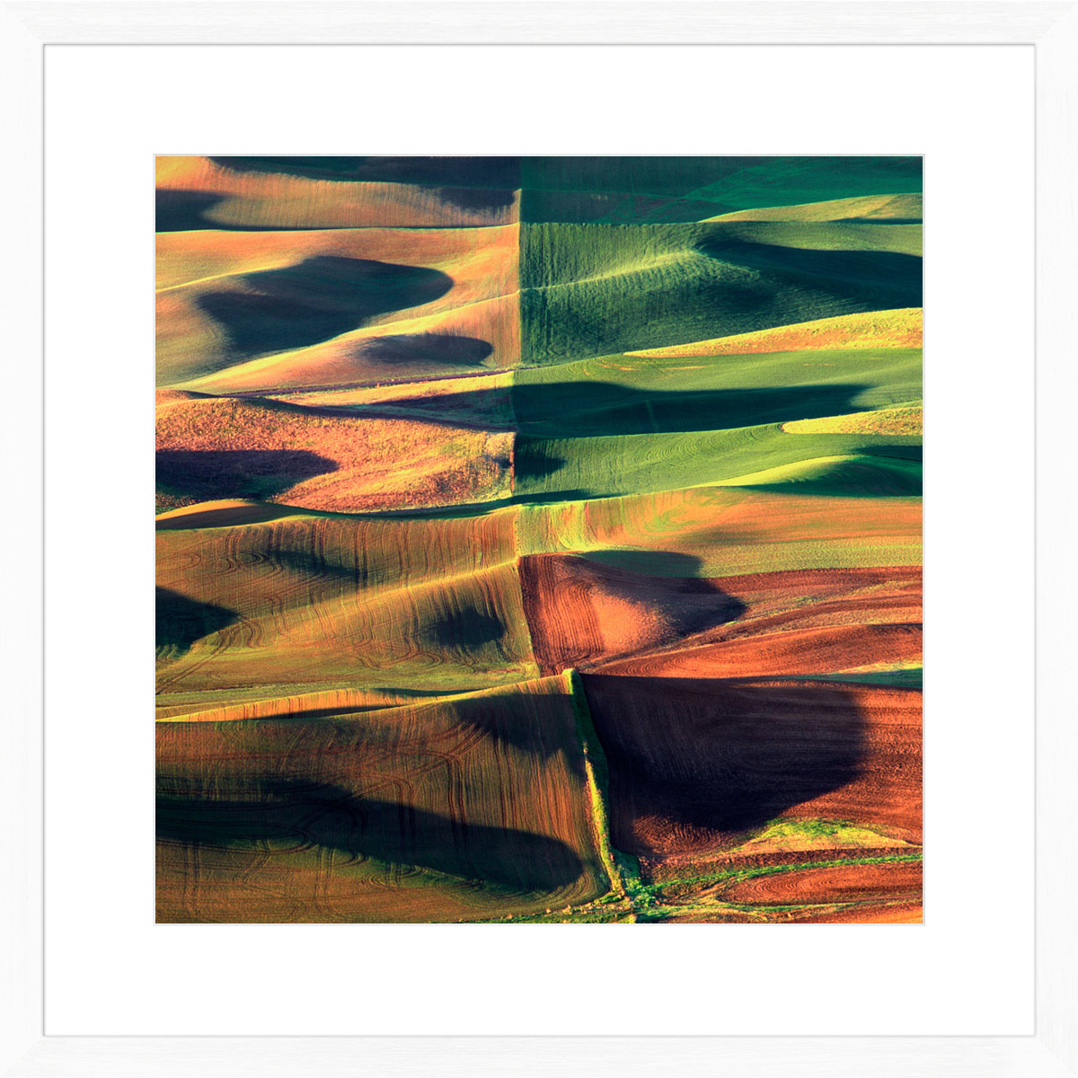 palouse-quads_white