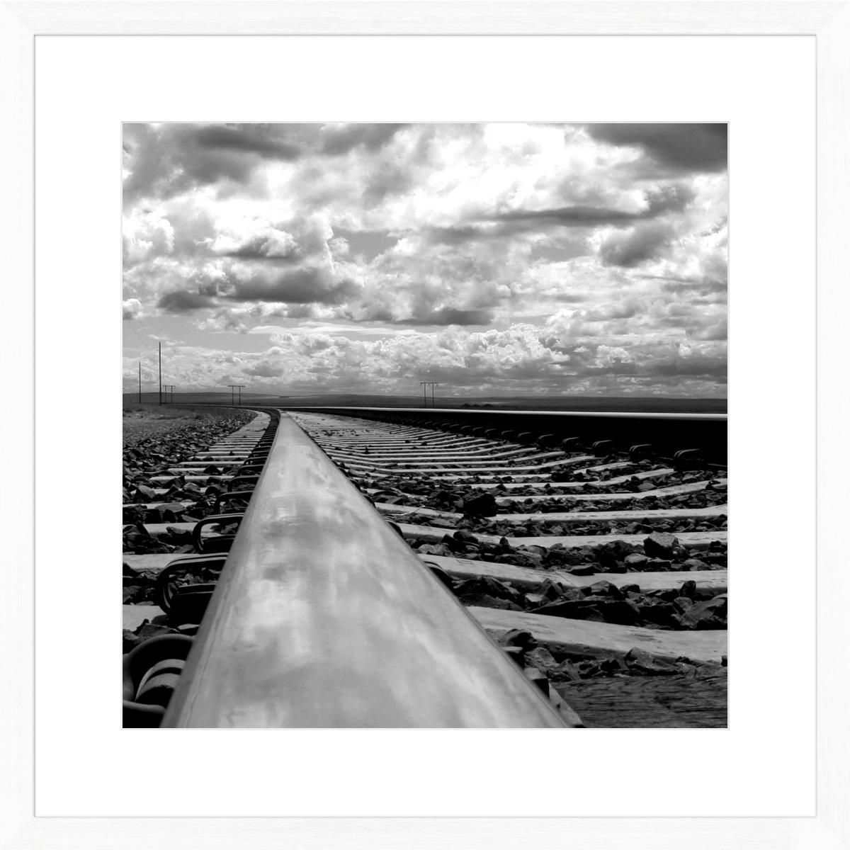 tracks_white