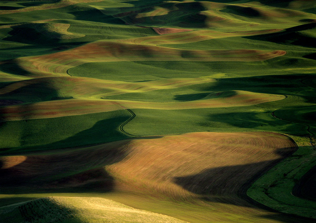Palouse-photographic-print