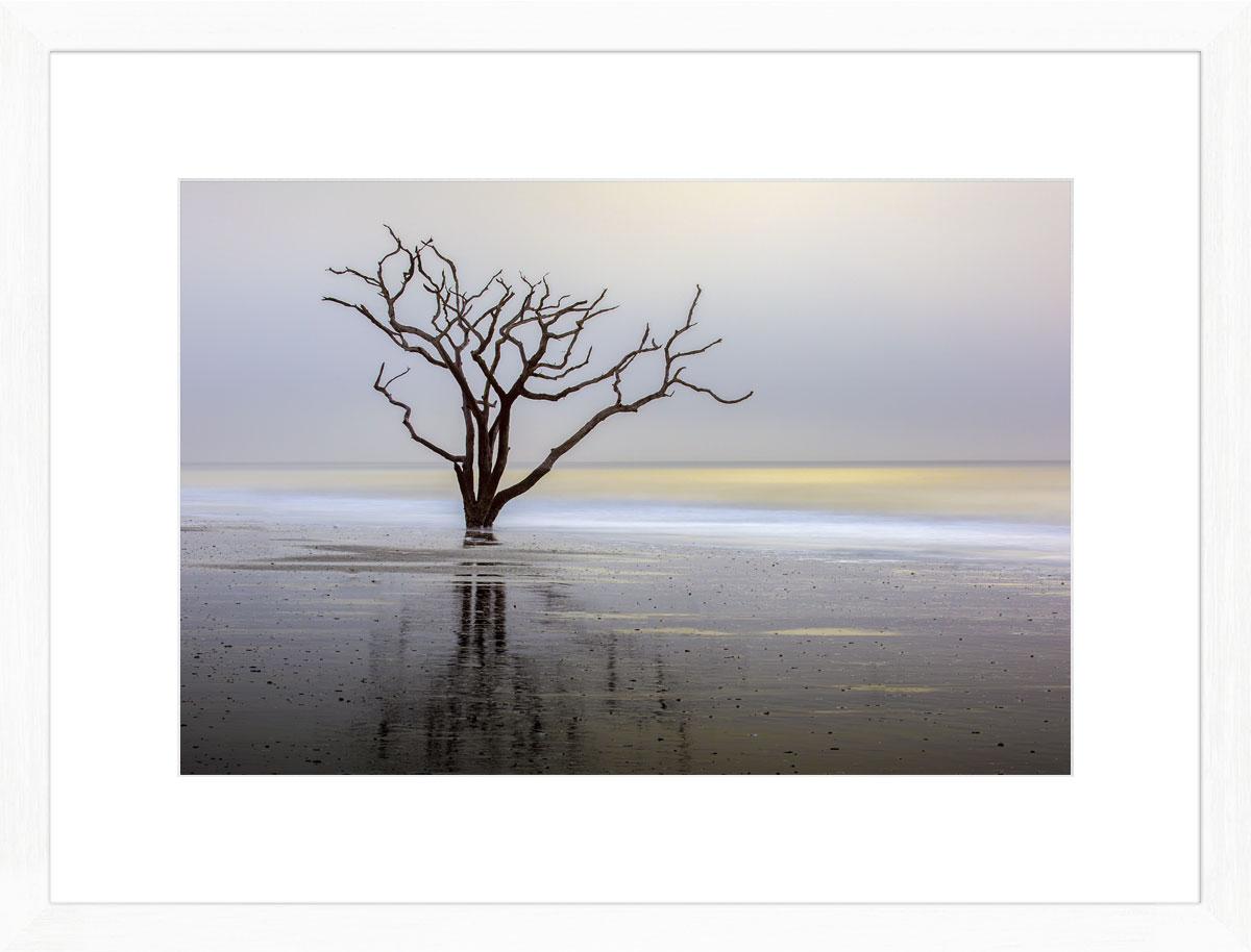 botany_bay_photographic_print_white