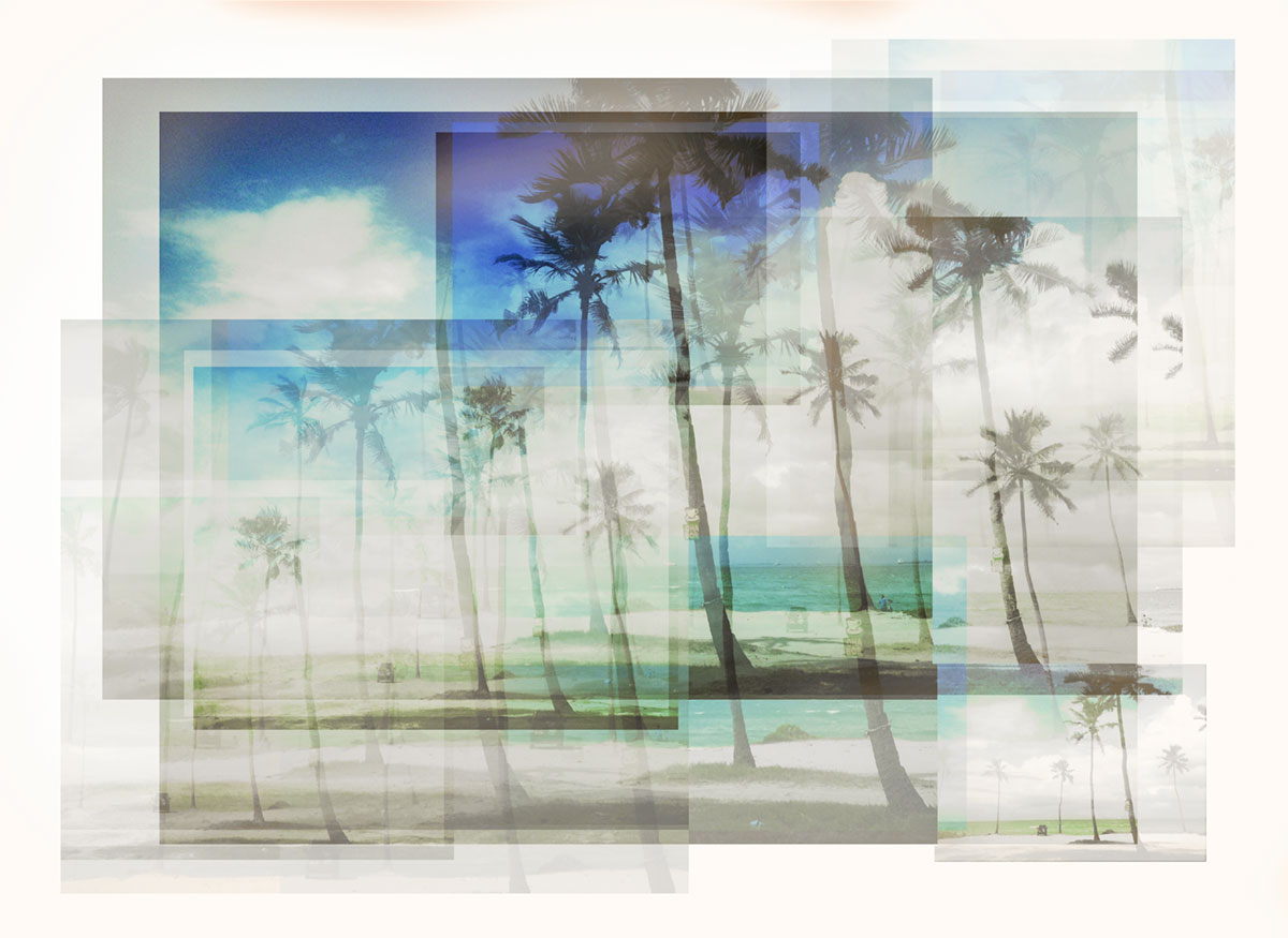 layered-solo-palms-photographic_print