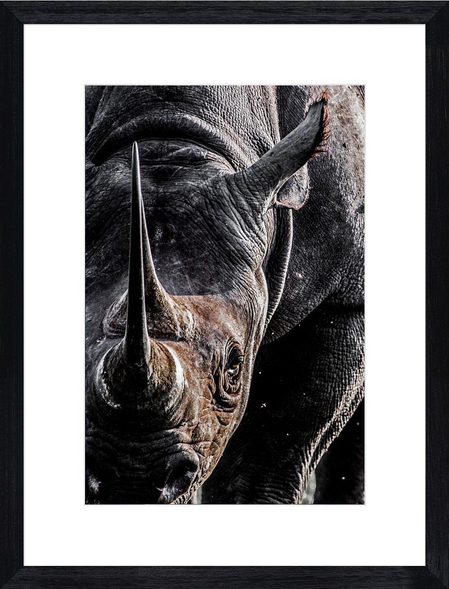 Rhino_photographic_print_black