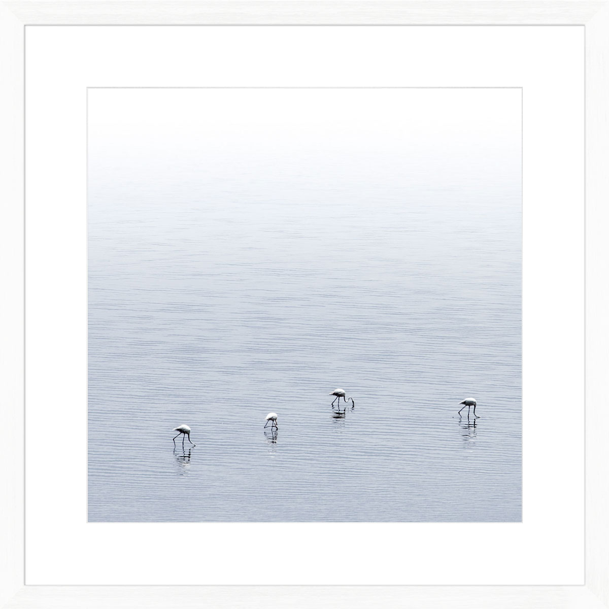 Flamingos-photographic-print-white