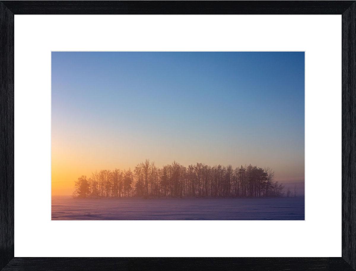 Rainbow-forest-fine-art-print-black-frame