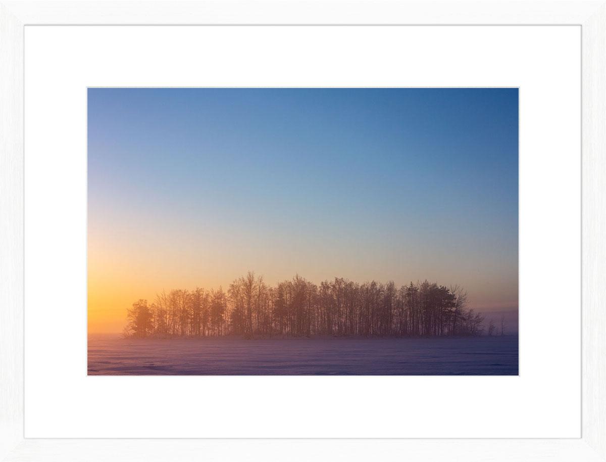 Rainbow-forest-fine-art-print-white-frame