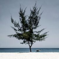 Mbudya Island II (c)